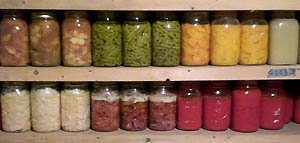 Shelves of full canning jars